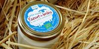 Originale yaourt copier